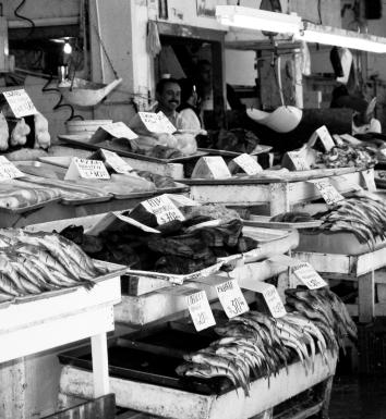 fish-market_2531752137_o-copy